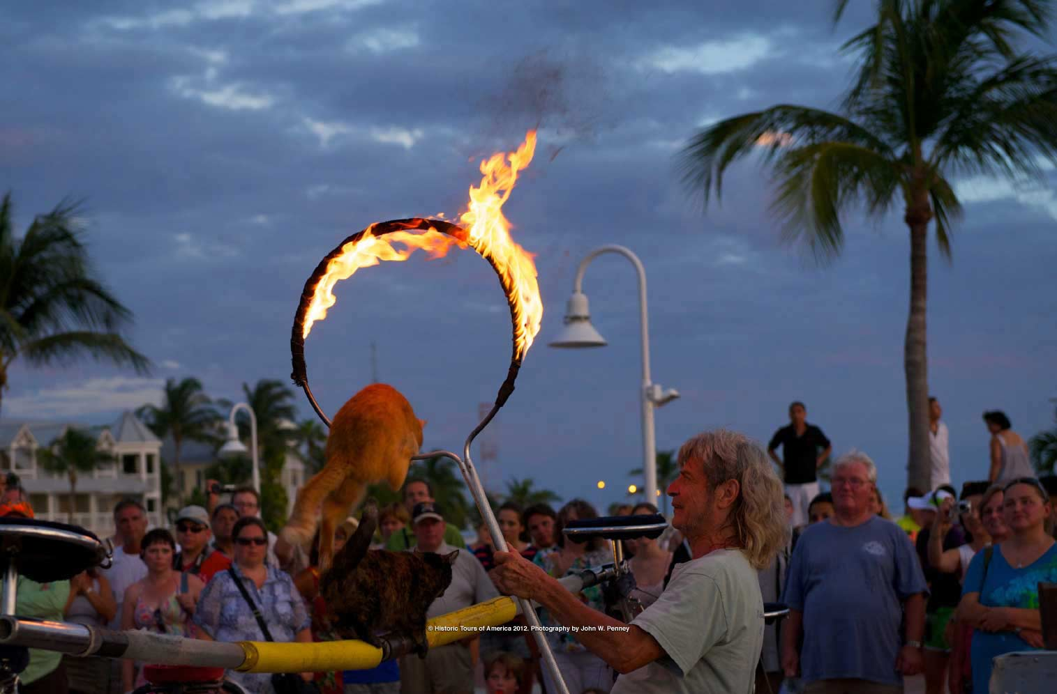 Photo of Sunset Celebration Performer